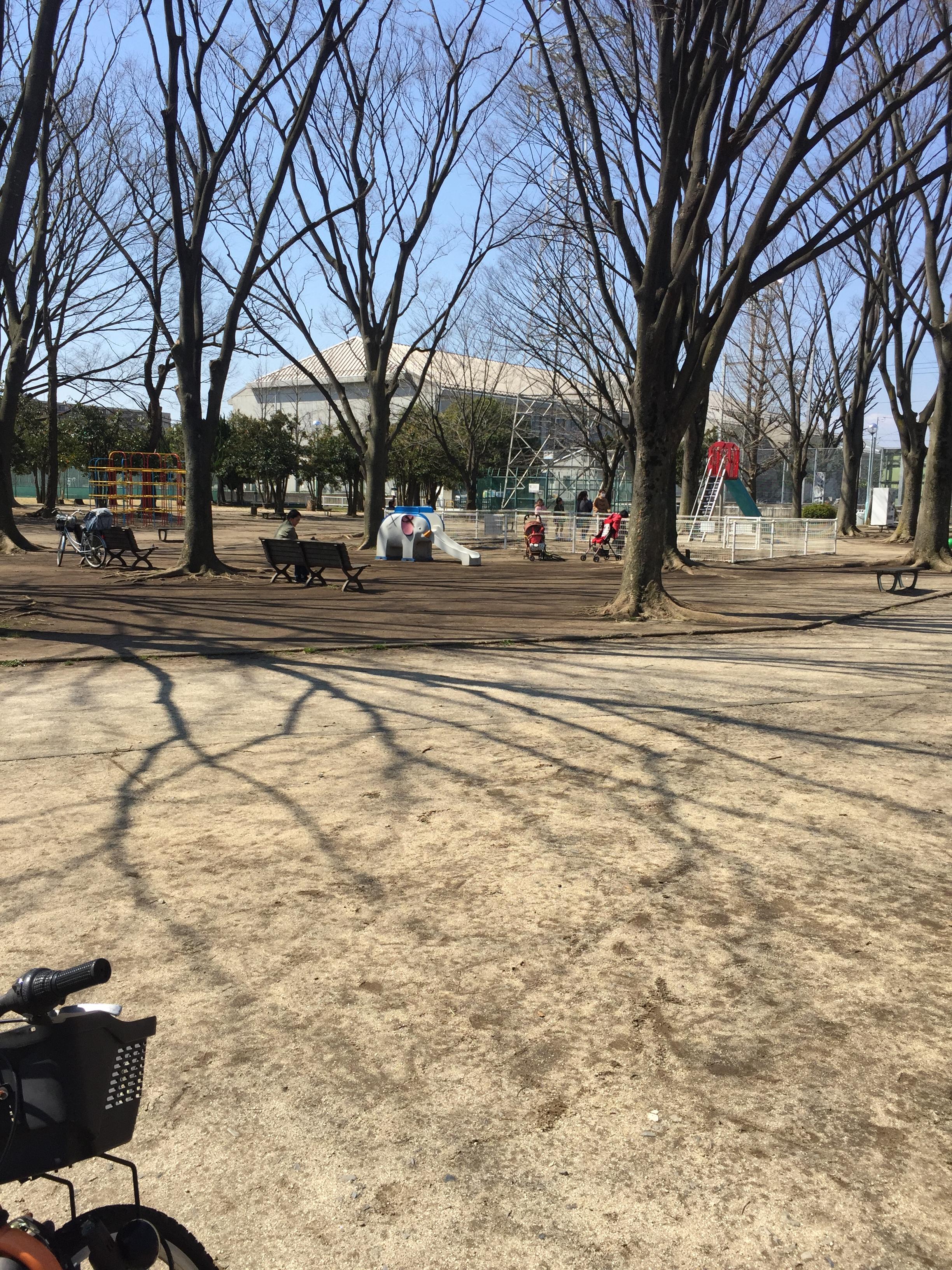 辻公園全景