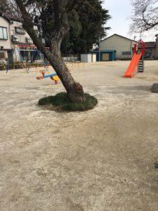 上青木氷川公園10